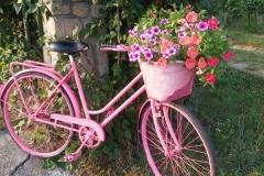 I oczywiście nie może zabraknąć roweru przy bramie! Znak rozpoznawczy i symbol popularnych tu ścieżek rowerowych.