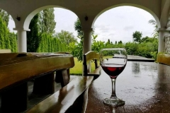 Wieczorem przy lampce wina...